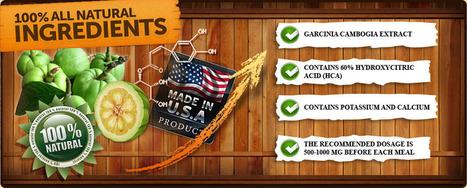 garcinia cambogia vs green tea extract   Garcinia Cambogia Guide   Garcinia Cambogia Dr OZ Review   Scoop.it