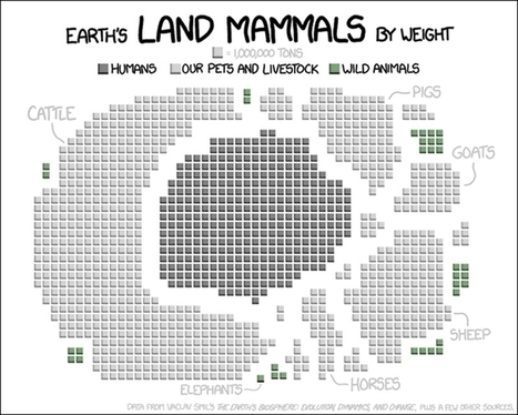 All of Earth's land mammals by total weight in one graph | green infographics | Scoop.it