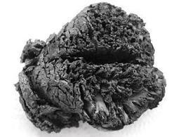 Human brain boiled in its skull lasted 4000 years - life - 03 October 2013 - New Scientist | Archaeology News | Scoop.it