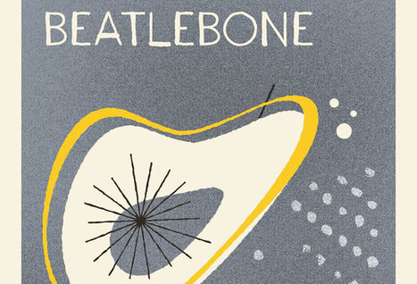 Beatlebone by Kevin Barry –read an extract / Canongate   The Irish Literary Times   Scoop.it