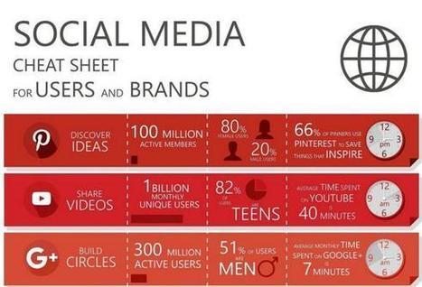 Social Platform Audiences Cheat Sheet [Infographic] | Social Media & Digital Marketing | Scoop.it