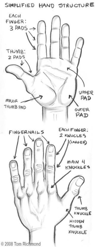 Hand Drawing Tutorial | Drawing and Painting Tutorials | Scoop.it
