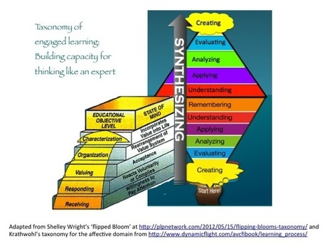 Taxonomy of engaged learning | suehellman | Scientific teaching and engaged learning: building capacity for expert thinking | Scoop.it