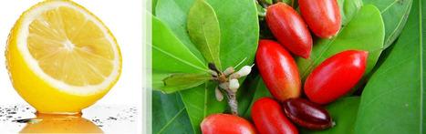 Miraculine, vous n'en croirez pas vos papilles ! | Innovation, tendances & agroalimentaire | Scoop.it
