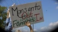 Nuevo México contra Monsanto: pretenden que la empresa etiquete los productos transgénicos | Bioethic | Scoop.it