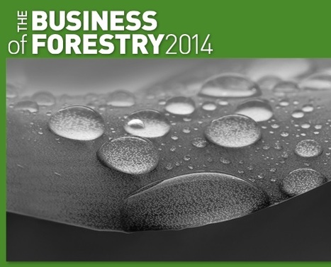 Imagem e Esri marcam presença no Business of Forestry Conference 2014 | Geoflorestas | Scoop.it
