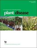 Quantification of Live 'Candidatus Liberibacter asiaticus' Populations Using Real-Time PCR and Propidium Monoazide | Diagnostic activities for plant pests | Scoop.it