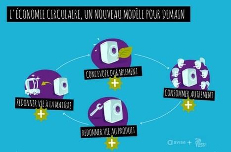 Dossier Economie circulaire | Avise.org | Emplois verts | Scoop.it