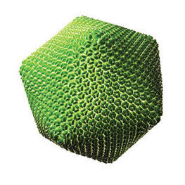 An Ocean full of Viruses -- There are hundred million times more viruses on Earth than stars in the universe   Science   Scoop.it