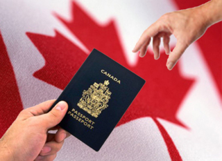 Why Need An Immigration Consultant For Canada? | UKSmartBuild | Loft Conversion Company London | Scoop.it