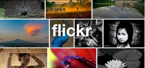 Flickr At 10: 1M Photos Shared Per Day, 170% Increase Since Making 1TB Free | Tech News: Gadgets | Scoop.it