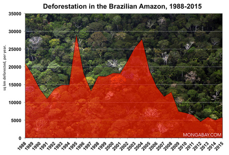 "The year in rainforests: 2015 (""are we winning the battle to save our forests as the economy slides?"") 