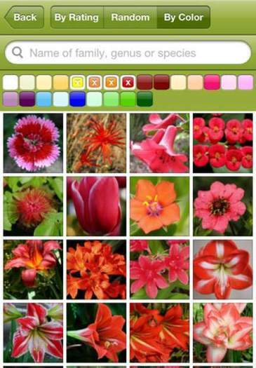 Gardening apps dig deeper | Gardening Inspiration and Information | Scoop.it