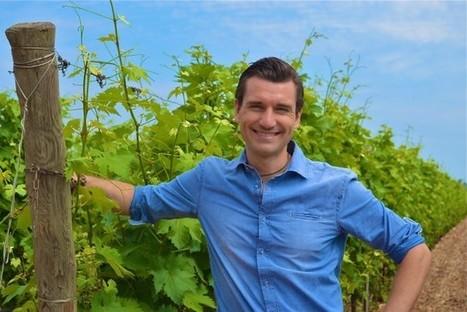 The Proust Q&A: Lorenzo Zonin | Vitabella Wine Daily Gossip | Scoop.it