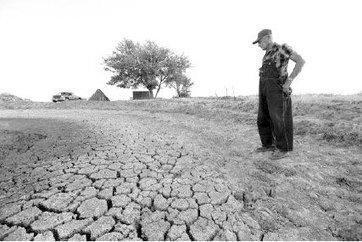 Agriculture en Afrique du Nord : La FAO évoque une grave pénurie | Questions de développement ... | Scoop.it