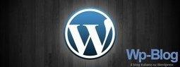 Mettere la faccia nei risultati di ricerca con Wordpress: Tutorial | Wordpress themes plugin tips | Scoop.it