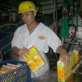 Exportaciones de lácteos a El Salvador generan más empleo | Río+20 El Salvador | Scoop.it