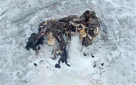 Le réchauffement climatique fait resurgir les cadavres de soldats de 14-18 | Nos Racines | Scoop.it