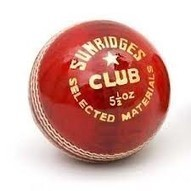SS Cricket Ball | Sports Equipment Online India | Scoop.it