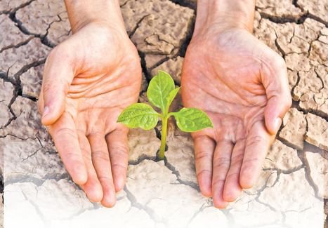 ¿Cómo afectará a su vida el cambio climático? | La Prensa | Agua | Scoop.it