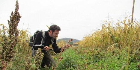 Dordogne : inventaire dans les prés verts | Agriculture en Dordogne | Scoop.it