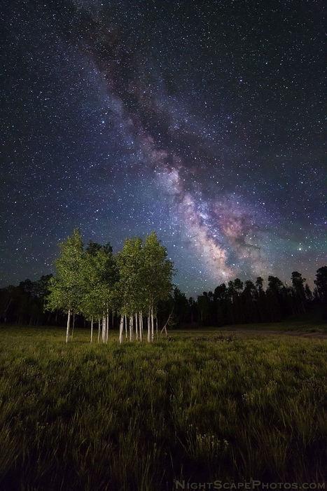 Galactic Aspens | My Photo | Scoop.it