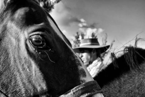 DIA DEL TRABAJADOR RURAL – RURAL DEL PRADO   Fiestas Uruguayas   Trabajadores Rurales   Scoop.it