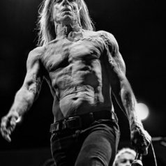 Iggy Pop  by Luuk | Kol Tregaskes Photography Blog | Scoop.it