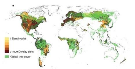 Nuestro planeta alberga tres billones de árboles / Noticias / SINC | Educacion, ecologia y TIC | Scoop.it