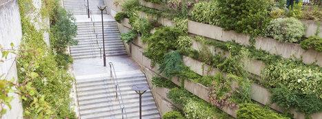 Des espaces urbains à verdir soi-même dans Paris | Aménagement et urbanisme durable | Scoop.it