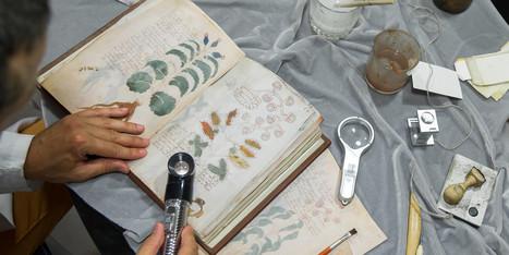 """Le très énigmatique parchemin dit """"Manuscrit Voynich"""" sera reproduit en Espagne   CDI Lecture   Scoop.it"""