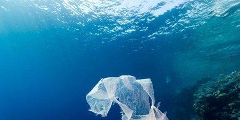 Pollution des océans : c'est pire qu'on le pensait, ils sont de véritables poubelles   Toxique, soyons vigilant !   Scoop.it