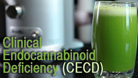Cannabinoid Deficiency May Explain Your Health Problems | Cannabis & Drug Policy Reform | Scoop.it