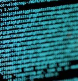 Completan el mayor estudio de secuenciación genética de ... | 3ª Evaluación: Genética. | Scoop.it