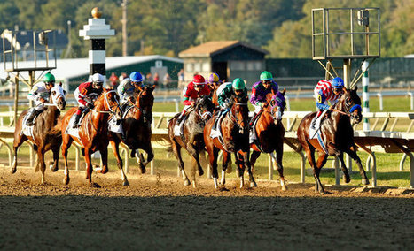 In Pennsylvania Derby, a Record Run Upstages the Return of California Chrome | Horse Racing News | Scoop.it