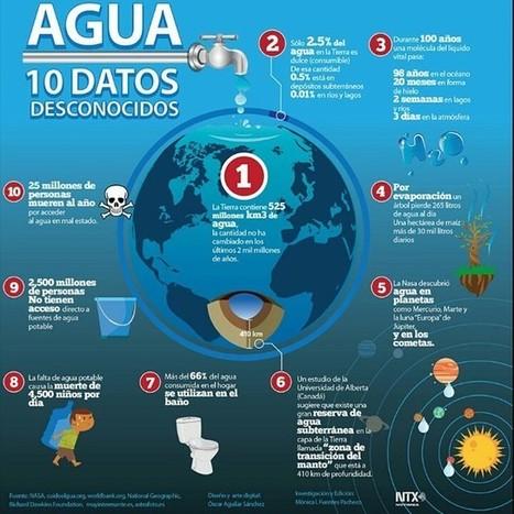 10 datos sobre el agua | Agua | Scoop.it