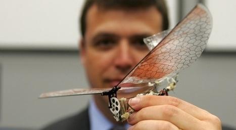 Les drones vont-ils avoir raison de l'humanité?   Slate   ECONOMIES LOCALES VIVANTES   Scoop.it