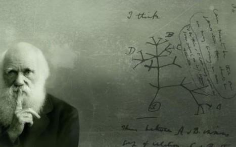 ¿Cómo llegó el darwinismo a España? | Naukas | Cuaderno de Cultura Científica | Religiones. Una visión crítica | Scoop.it