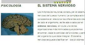 PSICOSYSTEM: Funciones del cerebro humano   el cerebro:Introducción a la neurociencia   Scoop.it