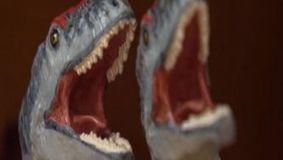 Os dinossauros estão no museu da Lourinhã | Ciências Naturais | Scoop.it