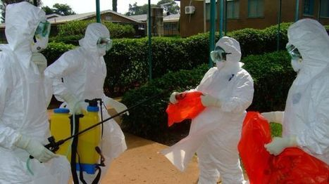 #Ebola can spread in West #Africa #virus #health | Messenger for mother Earth | Scoop.it