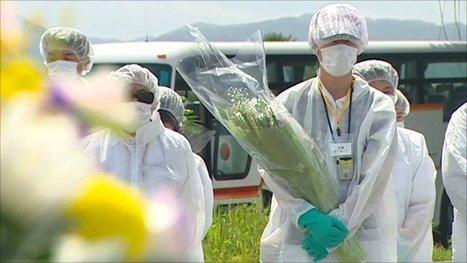 [Eng] Bref retour pour des résidents de la zone d'exclusion de Fukushima | BBC News | Japon : séisme, tsunami & conséquences | Scoop.it
