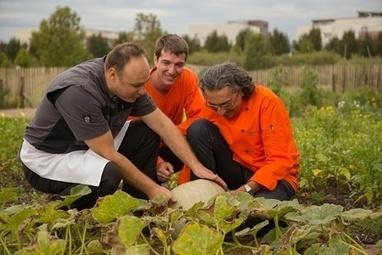 De la graine au potager puis à l'assiette : comment les variétés anciennes lyonnaises reprennent racine | Agriculture Urbaine et gouvernance alimentaire | Scoop.it