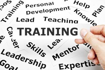 Leadership + Team Development: How Peer Coaching Saves Time and Resources   SkyeTeam: Leadership-Matters   Scoop.it