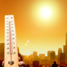 Temperature Extremes and Climate Change Risk | UtilityTree | Scoop.it