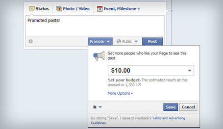 Facebook Promoted Posts: A Step-By-Step Guide | Internet Marketing Strategy 2.0 | Scoop.it