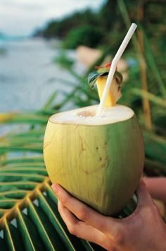 Coconut Water and Pregnancy | Easy Caribbean Shop Blog | Caribbean Food and Drink Groceries | Caribbean Recipes | Caribbean Travel | Maisons Créoles | Scoop.it