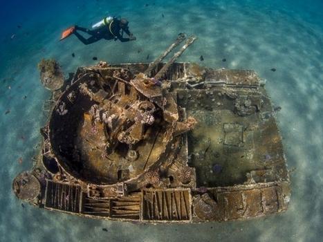 EN IMAGES. Les merveilles du monde sous-marin en 20 photos   Routes culturelles et itinéraires en Méditerranée   Scoop.it