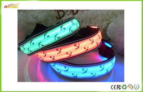 LED dog safety collars from china - chinadogs的日志 - 网易博客 | cute pet supplies | Scoop.it