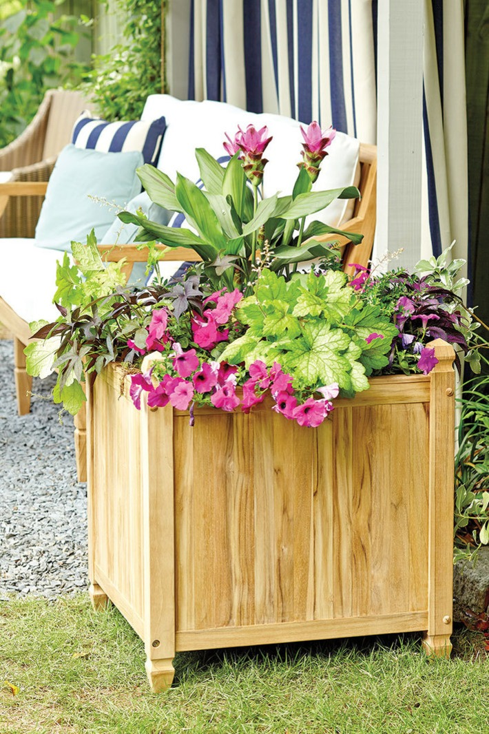 4 Tips for Creating a Classic, Lush Container Garden   Container Gardening   Scoop.it